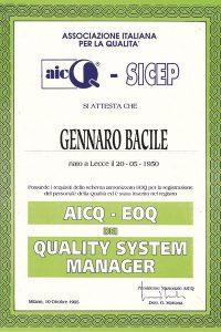 sistema gestione qualità iso 9001